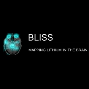 BLISS – 12 months to go!