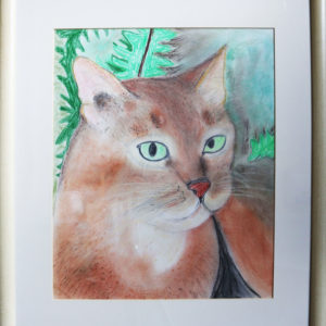 Cat drawing, wooden frame 19.5 x 22.5 inches Price £50