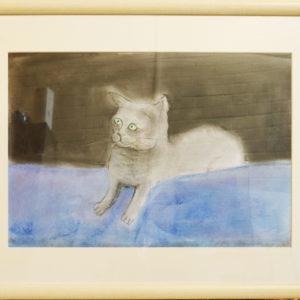 Grey cat pastel drawing