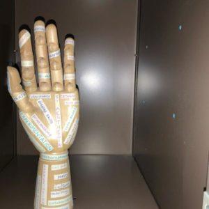 Bamburgh Clinic creates unusual art project