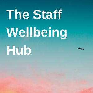 Wellbeing support for health and care staff in the North East and North Cumbria
